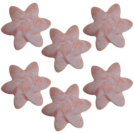 Japanese Magnolia - soja wax melts